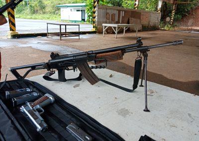 GUNS AND AMMOS (16)